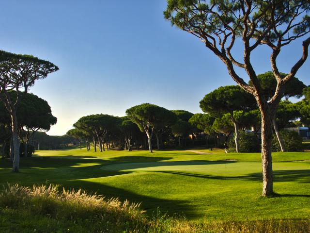 https://media.costalessgolf.com/2015/05/Millennium-Golf-640x480.png