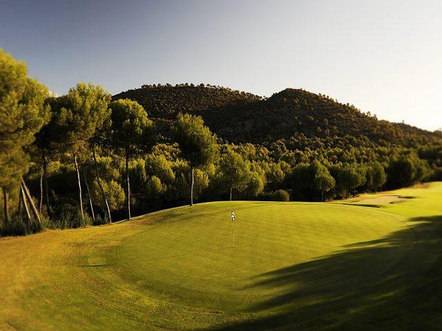 https://media.costalessgolf.com/2015/05/Son-Quint-Golf-640x480.jpg